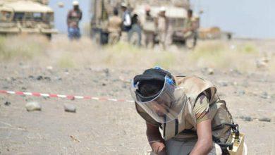 Mines Destroyed in Al Jawf