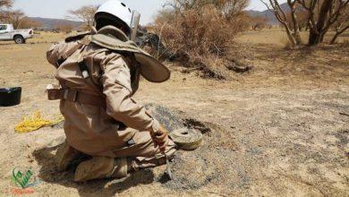MASAM Demining Teams