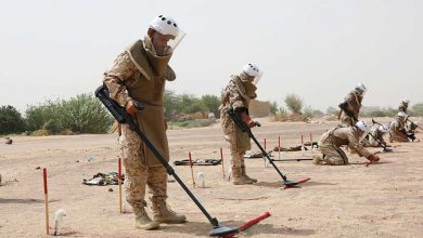 9185 Houthi-laid mines cleared in November