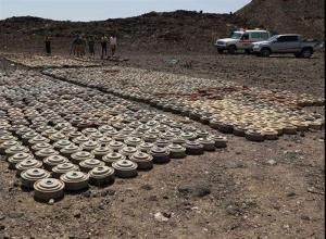 Yemen' Army Dismantle Mines in Sa'dah