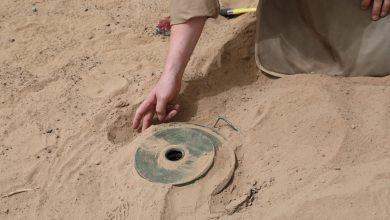 Mine Disposal Expert Killed in Taiz